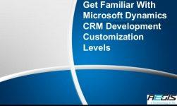 MS CRM development